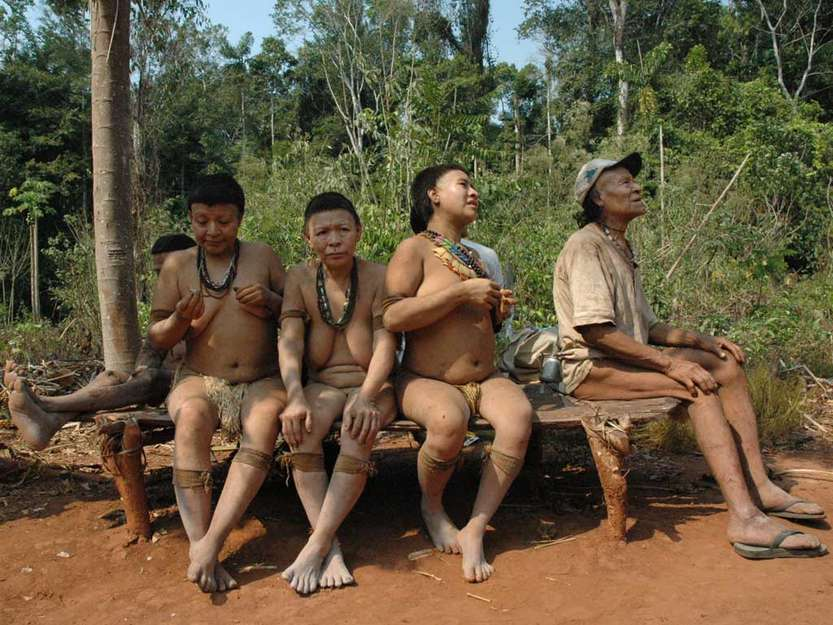 Amazon Indian Tribes Girls Pussy - Lost tribe of the amazon nude . Nude Images. Comments: 3
