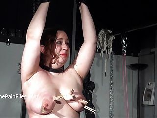 Have bbw slut punished with a whipping bbw