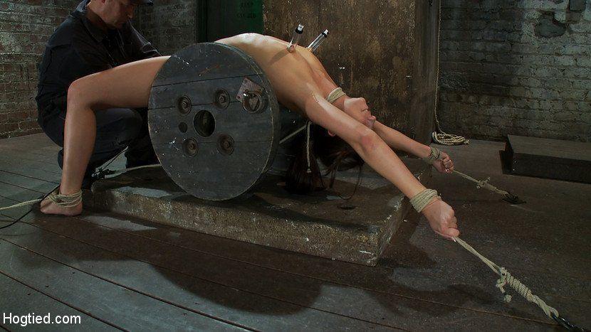Nicollette sheridan naked nude