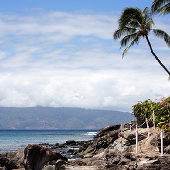 Gay travel hawaii
