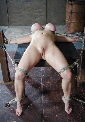 best of Titss galleries Bondage