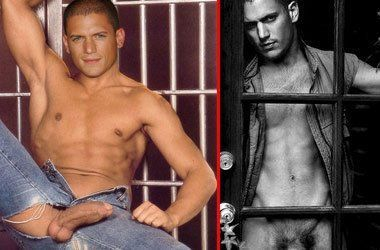 Nude naked wentworth miller for the information