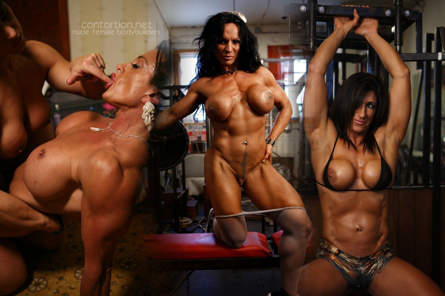Body Builders Nude Photos body builder female hot naked - top porn photos. comments: 3