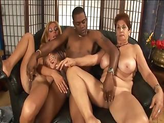 Excellent hot blonde milf orgys excited too