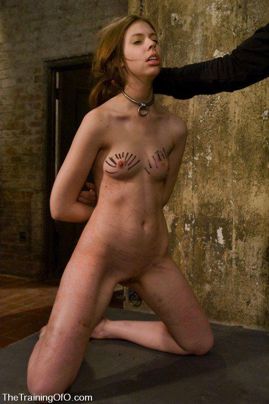 Stephanie courtney photos nude