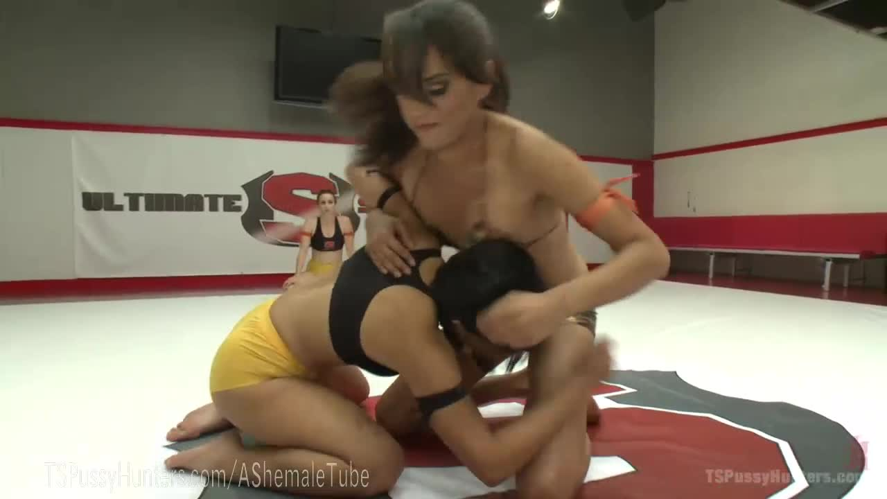 Lesbian shemale wrestling your