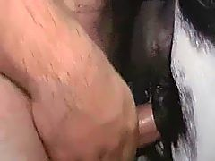 Showing porn images for johnny rapid gif porn