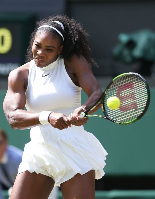 Boobs shows venus williams her apologise, but
